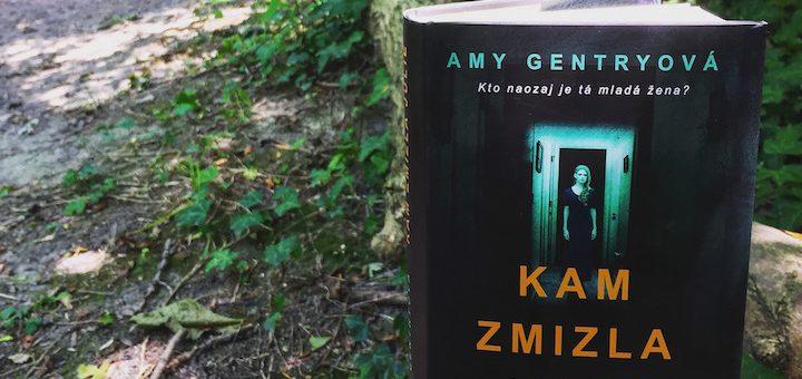 Amy Gentryová - Kam zmizla Julie