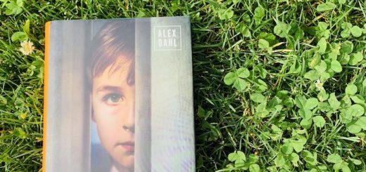 Alex Dahl - Chlapec pri dverách